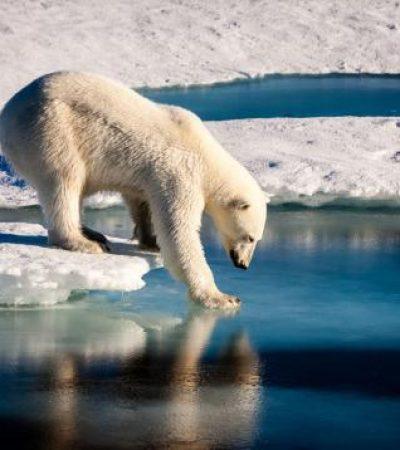 Apocalipsis y cambio climático
